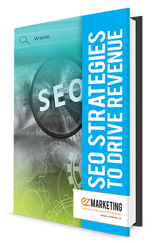 SEO Strategies to Drive Revenue book