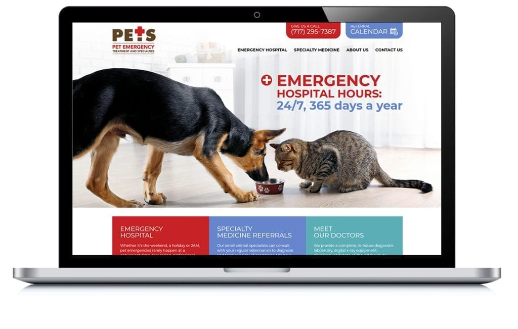 Example of Lancaster PETS