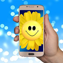 mobile phone with smiling sunflower
