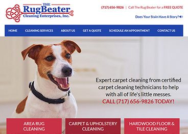 the rug beater case study