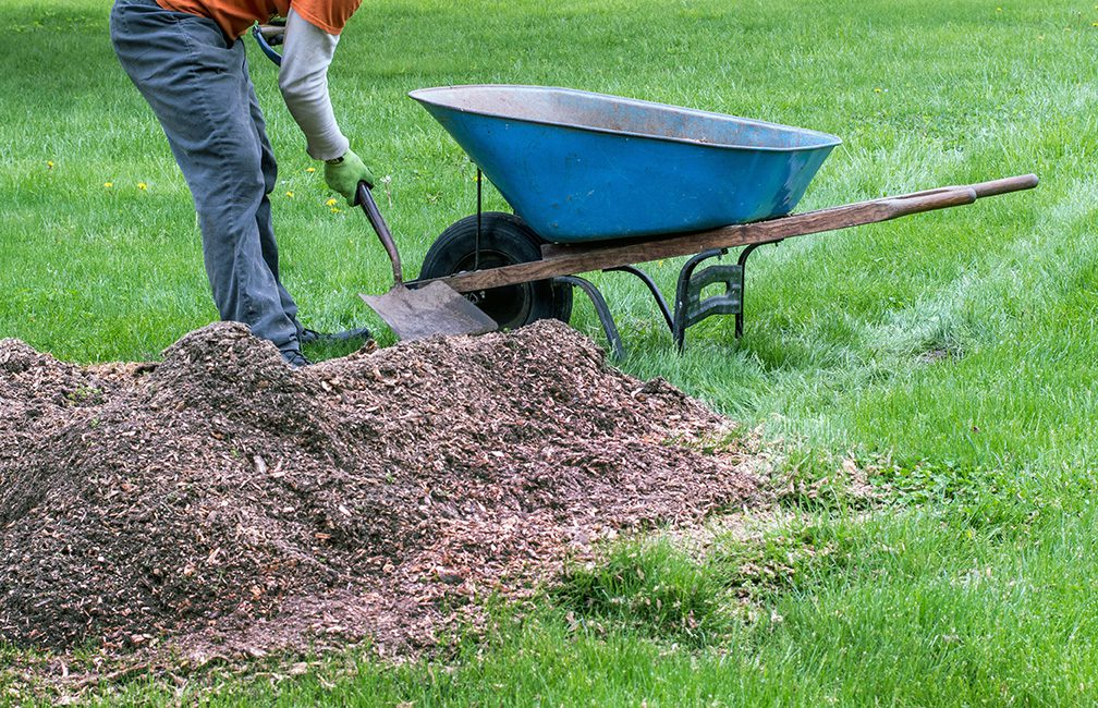 filling a wheel barrow up with a pile of mulch