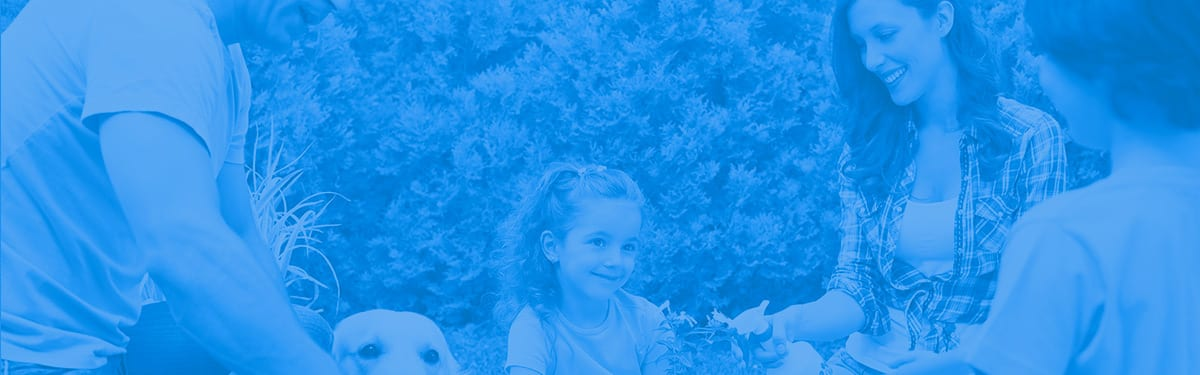 Blue filter of a family gardening