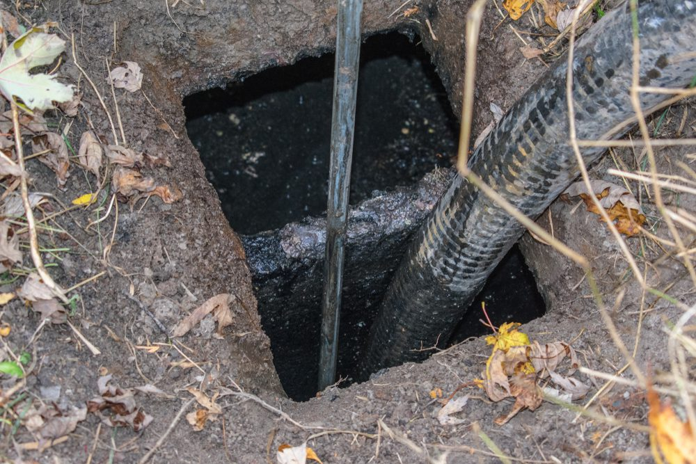 A septic hose pumps out the sludge in an overly full septic tank at home