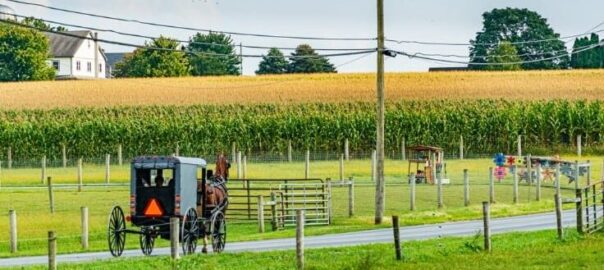Amish buggy traveling along scenic Lancaster County road