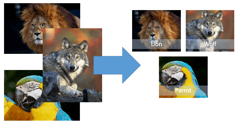 image resizing in powerpoint
