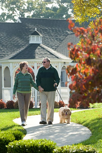 retired couple walking with dog