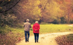 Senior couple taking a walk with their dog in the woods